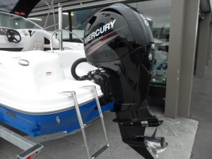 Rae Line 186C Outboard