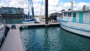 Q43 Berth - Abell Point Marina