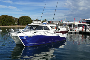 Sailfish 3000 Platinum Sports