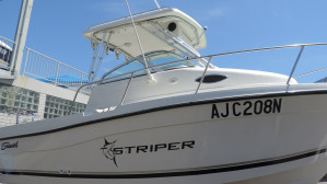 2002 Seaswirl Striper 2101 WA