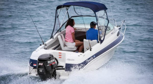 HAINES SIGNATURE 493F RUNABOUT