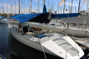 Jutson 40 Yacht