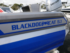 Black Dog 5.1m Shart Cat
