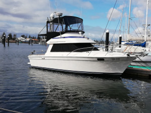 Used Inboard Power Cruising Boats For Sale | 38 South Boat Sales