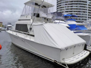 Moet 38 ft Dominator